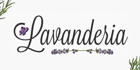 Lavanderia | Top Fonts to Use on Posters