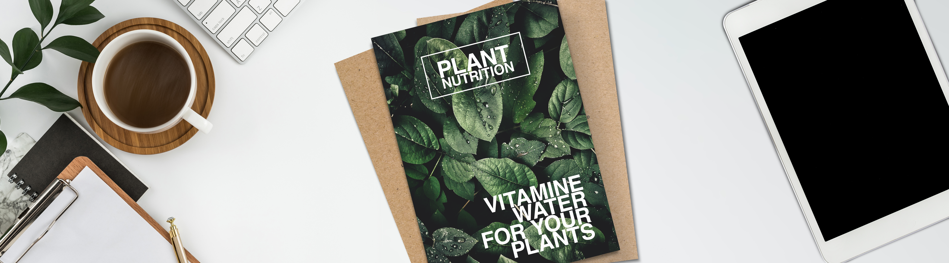 How to Choose the Right Eco-Flyer Material