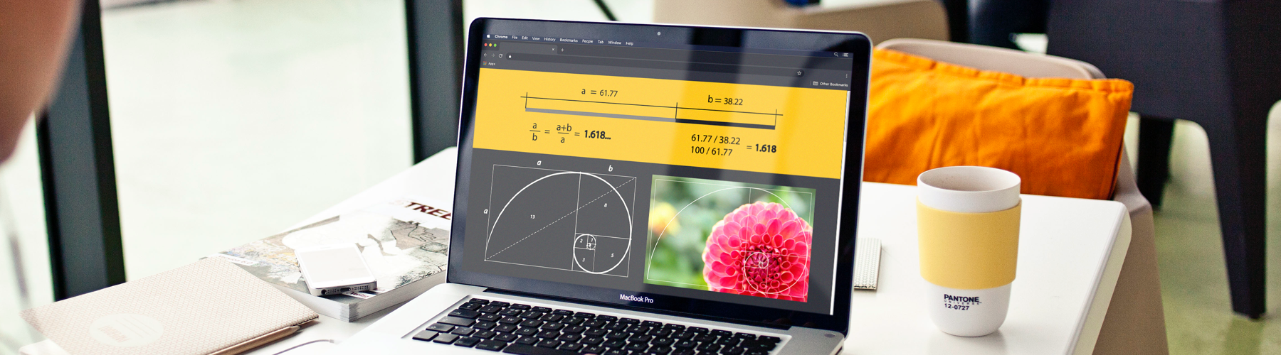 What is the Golden Ratio and How Can it Help You?